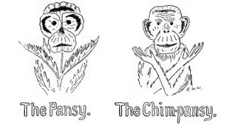 Wow. I searched monkey pansy and found it exactly. The whole book is here: http://lanny-yap.blogspot.com/2010/08/project-gutenberg-how-to-tell-birds.html  I love you internet.