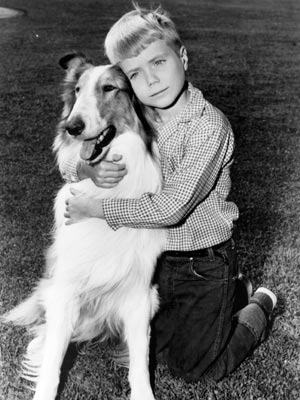 http://www.chicagonow.com/steve-dales-pet-world/2013/04/timmy-barks-the-real-lassie-story/