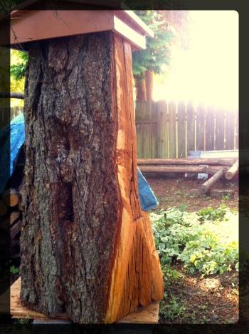 Log Hive